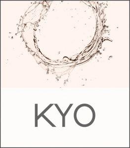 Icona di accesso al sito www.kyoitaly.com